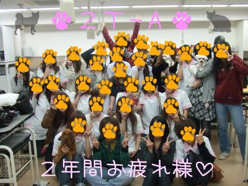 ☆2年トリマーAクラス☆