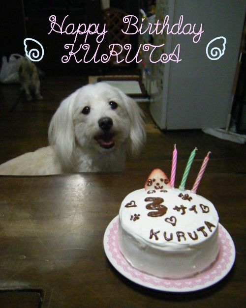 ★Happy Birthday KURUTA★