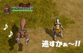 野犬狩り?3
