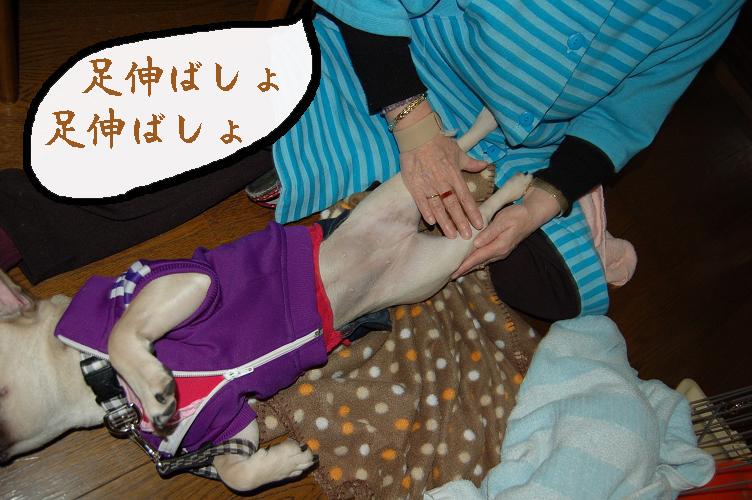 nobasho1.jpg