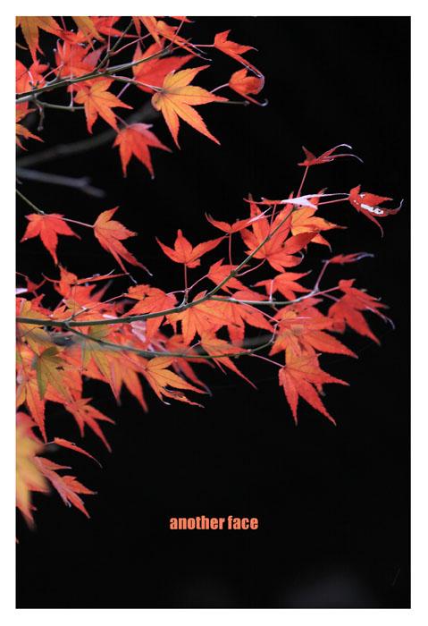 1129-Nanzenji2.jpg