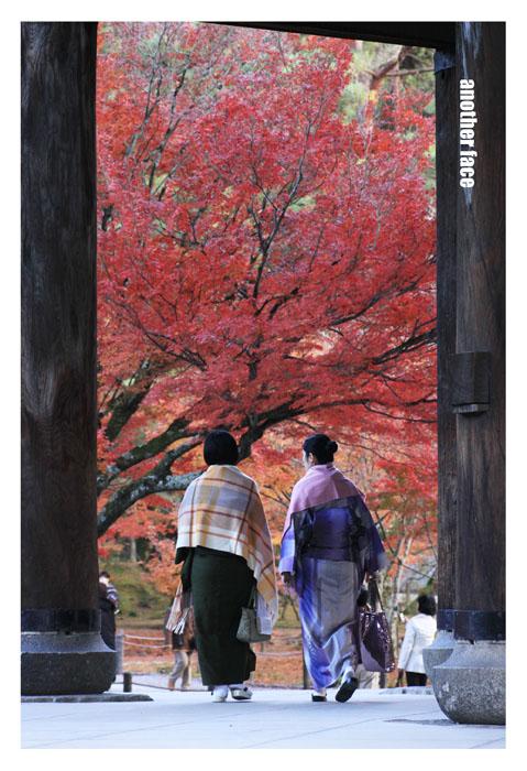 1129-Nanzenji4.jpg
