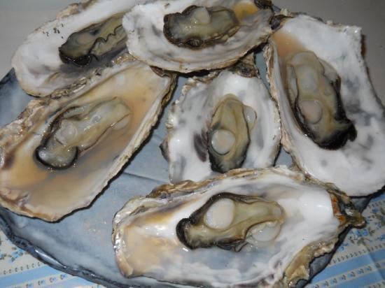 芭露牡蠣 (3)