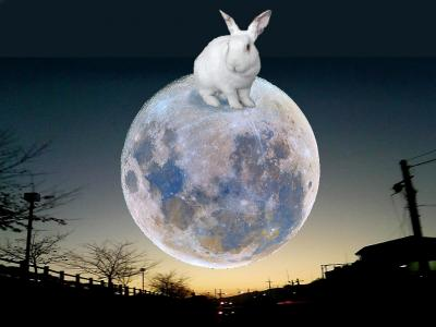 on_the_moon_convert_20110814133454.jpg