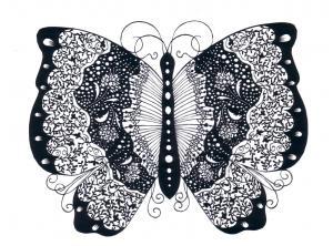 papillon1_convert_20100605130906.jpg