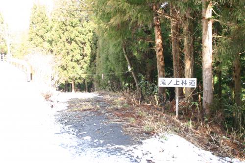 滝ノ上林道
