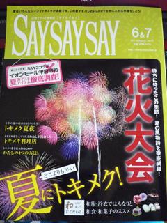 SAYSAYSAY73.jpg