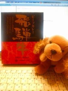 20091123233037飛騨牛カレー