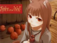 狼と香辛料7