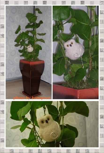 観葉植物とフクロウ