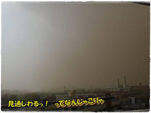 20130310-1.jpg