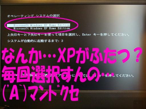 なんか…XPがふたつ?