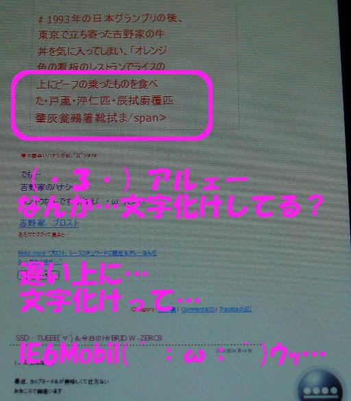IE6Mobil(´;ω;`)ウッ…