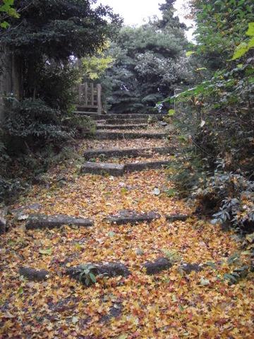 2010年11月神社仏閣巡りの旅 11-2010 067