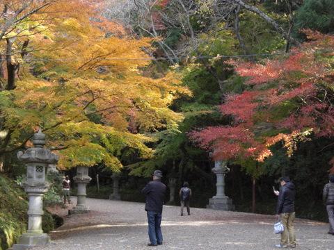 2010年11月神社仏閣巡りの旅 11-2010 265