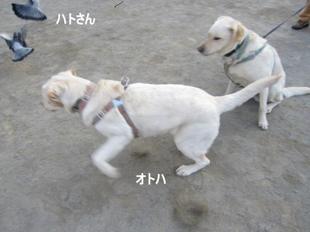 002_0415a.jpg
