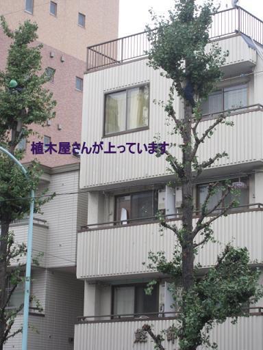 002_1101.jpg