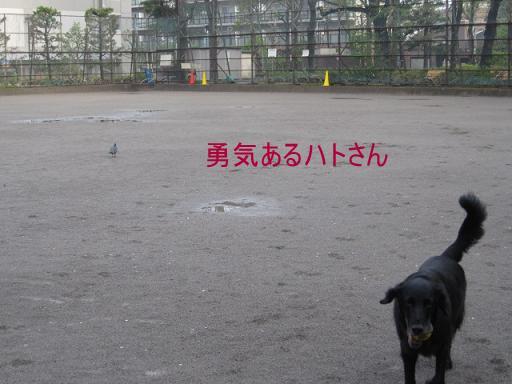 002_mm.jpg