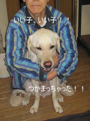 006_20100215123950.jpg