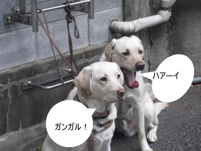 021_0222.jpg