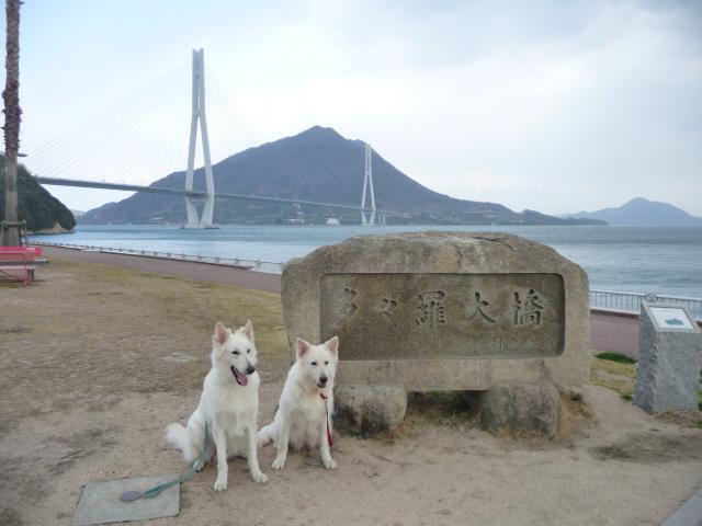 しまなみ海道の旅の★エース★&★リサ★