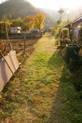 200911篠山 (125)