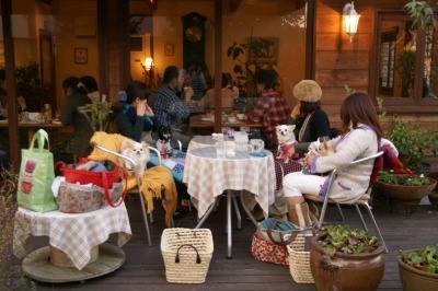 200911篠山 (141)