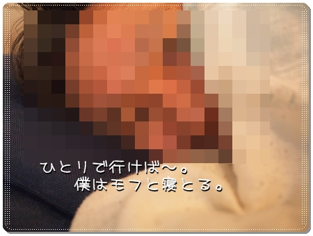 P2138272_0488.jpg