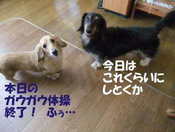 写真665(№210用)1