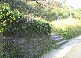 05 草生した石塀 (36%)
