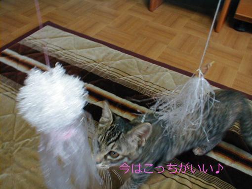 元祖とママ作