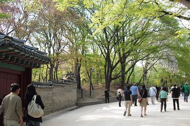 昌徳宮6庭園