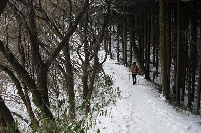 2 新登山道を登る