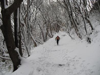 3 新登山道を登る