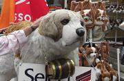 4 セントバーナード犬