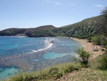 5 ハワイ2