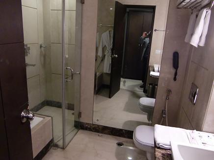 17 デリーのホテル・バストイレ