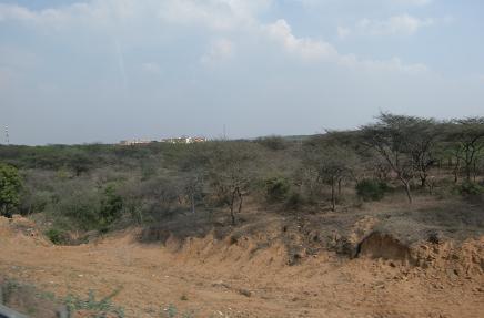 3 乾燥地帯へ