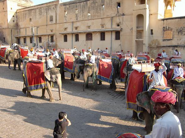 8 象に乗ってアンベール城へ