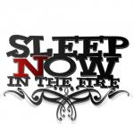 sleep now in the fire