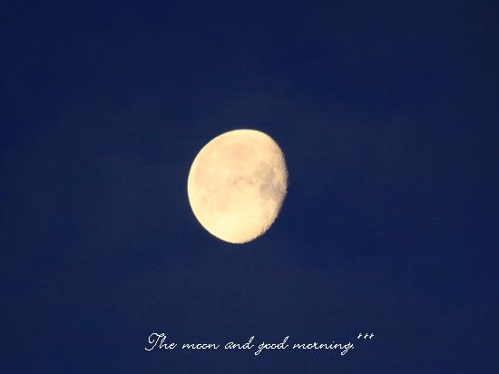 お月さま、おはよう!