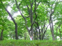 greens_convert_20110623190500.jpg