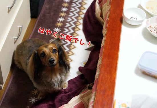 1101_20131211204926cbc.jpg