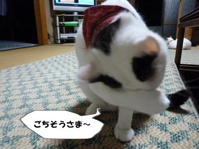 10_20100707200129.jpg