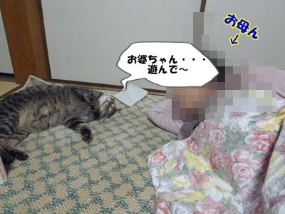 10_20110425122714.jpg