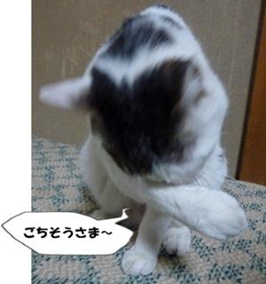 11_20100707200129.jpg