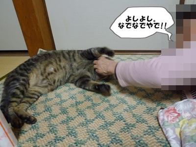 11_20110425122757.jpg