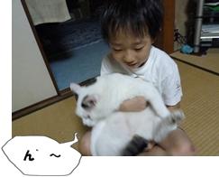 11_20110810073010.jpg
