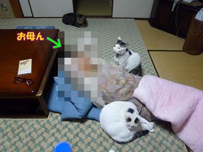 11_20111103001517.jpg