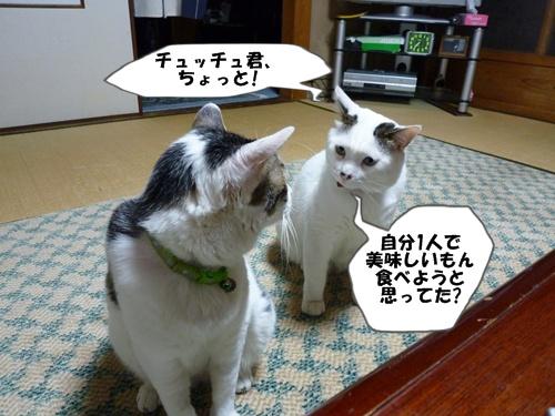 1_20100707200040.jpg